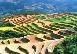 TP Hồ Chí Minh - Hà Nội - Sa Pa - Núi Hàm Rồng – Bản Cát Cát